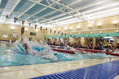 learn to group swimmers performing backstroke